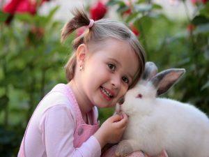 Love 1 Adorable Animal Baby