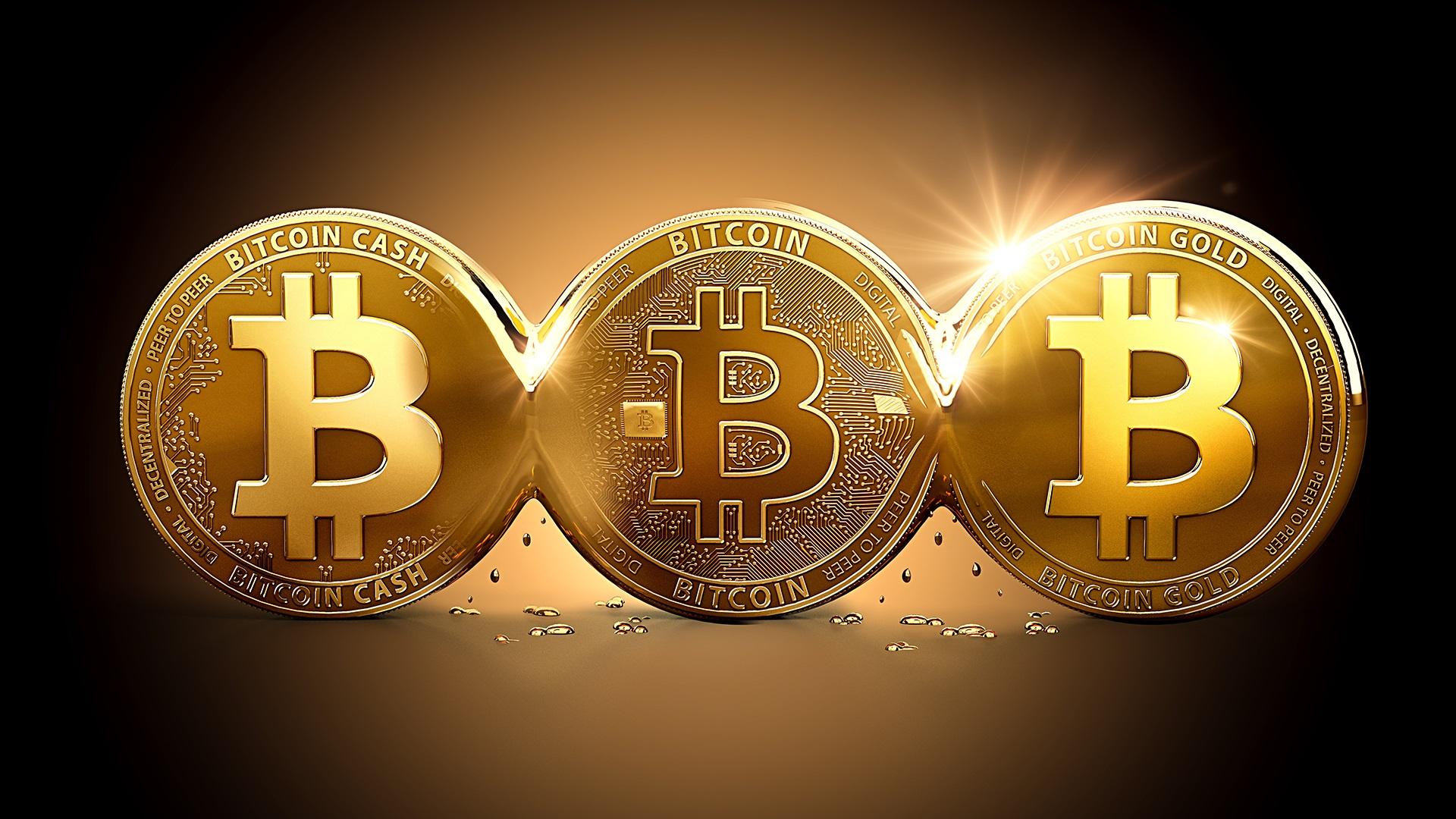 cryptostore-bitcoincash