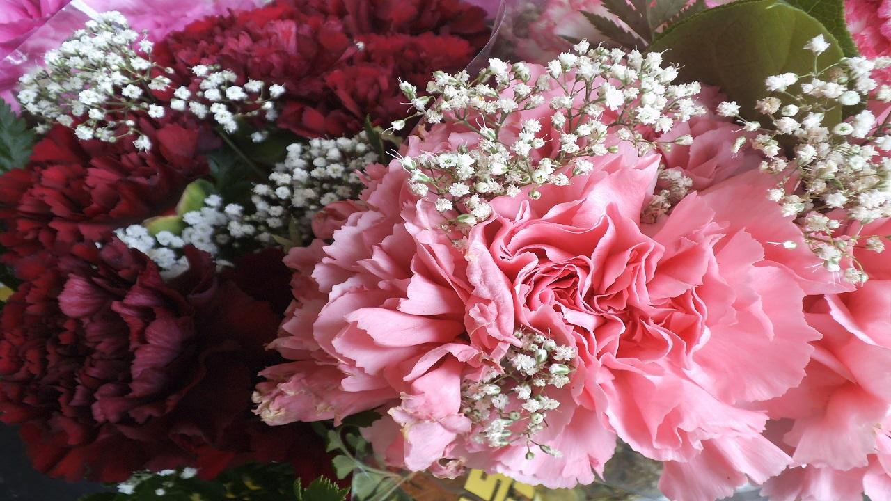 Flowers bukke