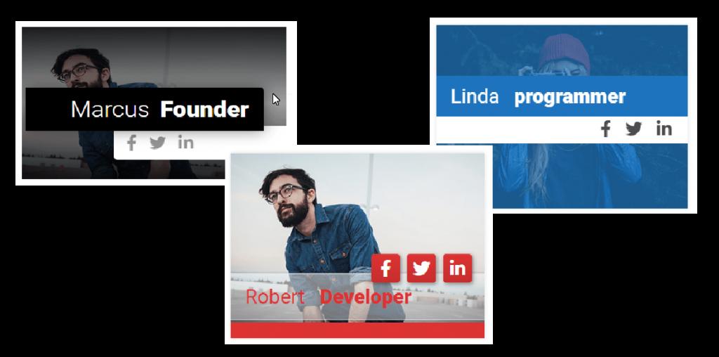 Team Builder Member Showcase Premium