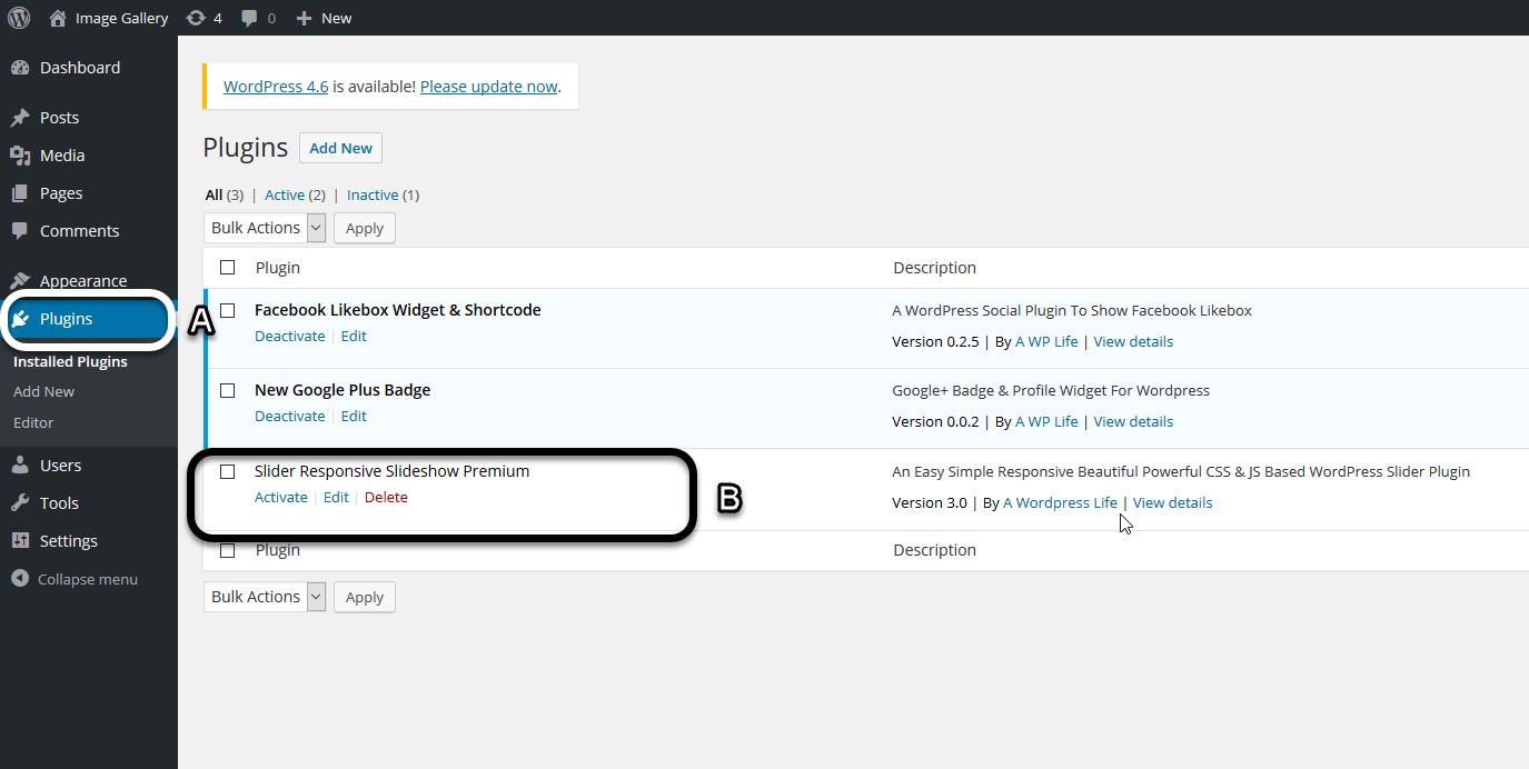 Activate Plugin (Slider Responsive Gallery)