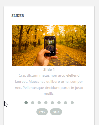 Add slider on page or post 10(Slider Responsive Gallery)