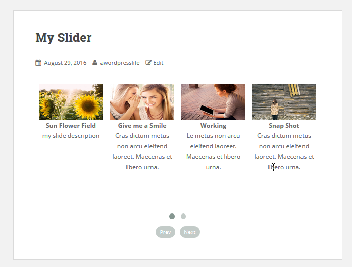 Add slider on page or post 5(Slider Responsive Gallery) png