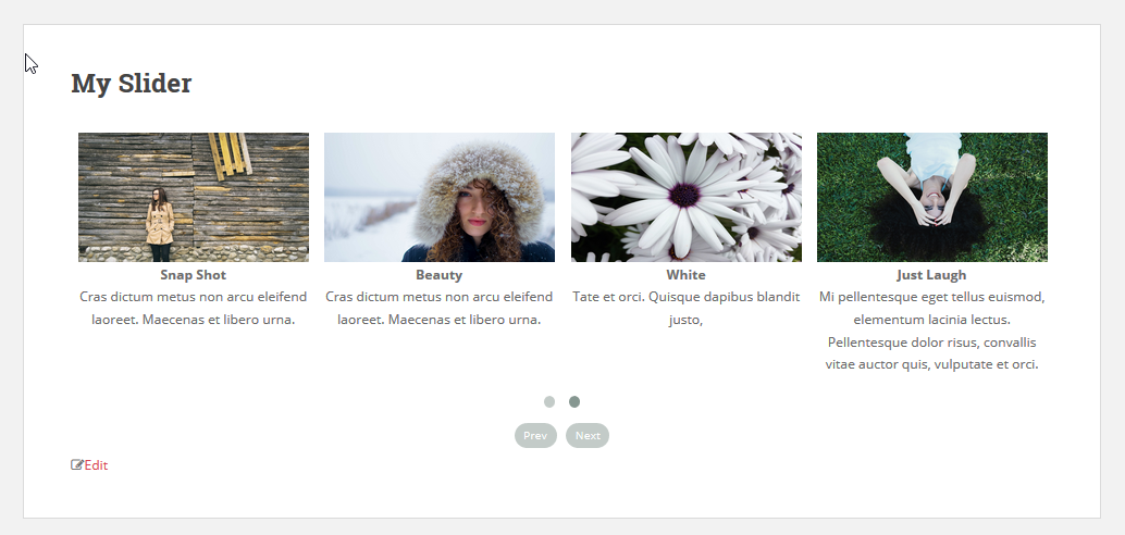 Add slider on page or post 7(Slider Responsive Gallery)