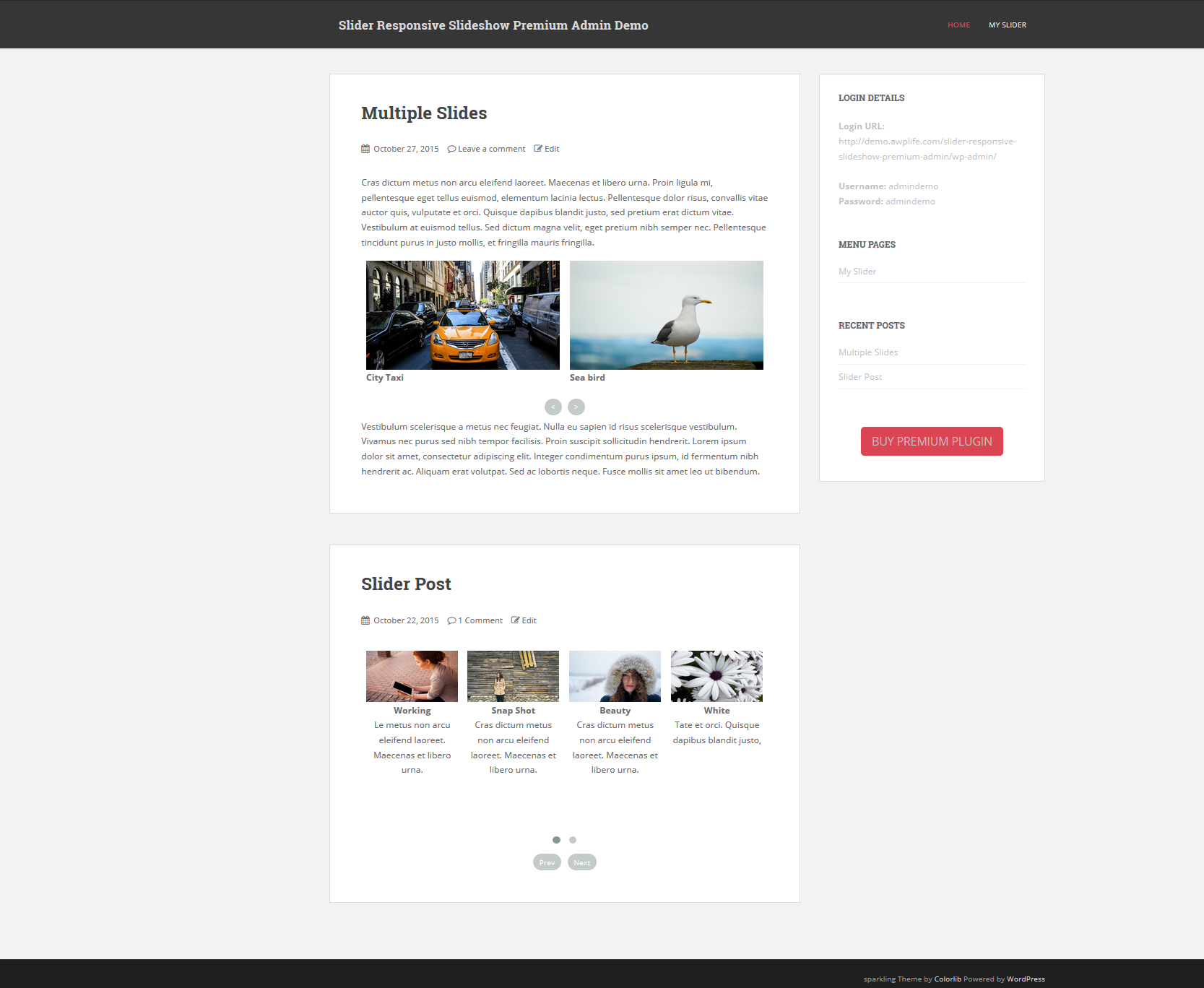 Preview (Slider Responsive Gallery)