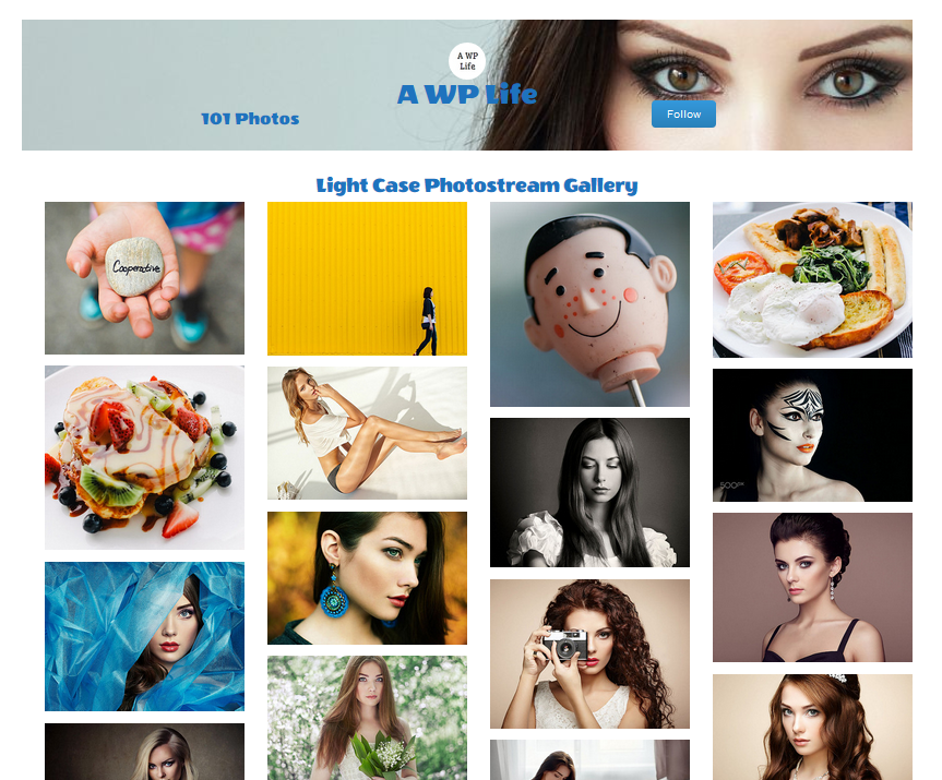 flickr-gallery-preview-2