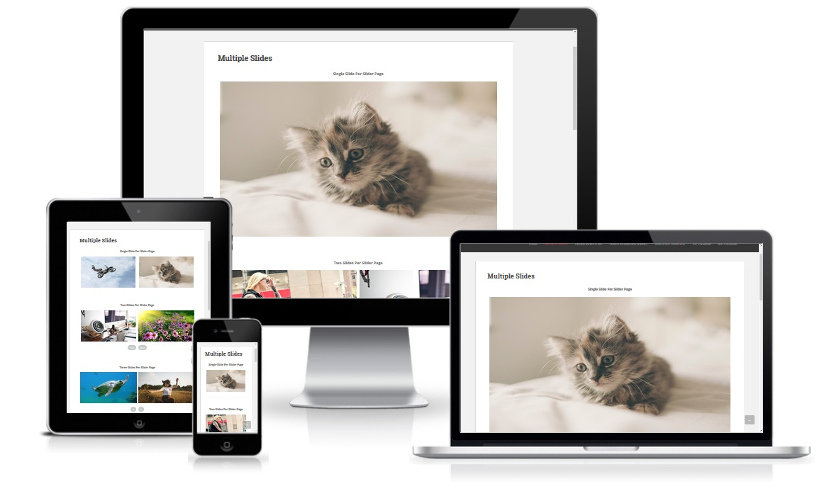 Slider Responsive Slideshow Wordpress Plugin