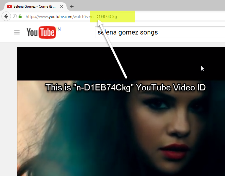 YouTube Video URL With Highlighted Video ID