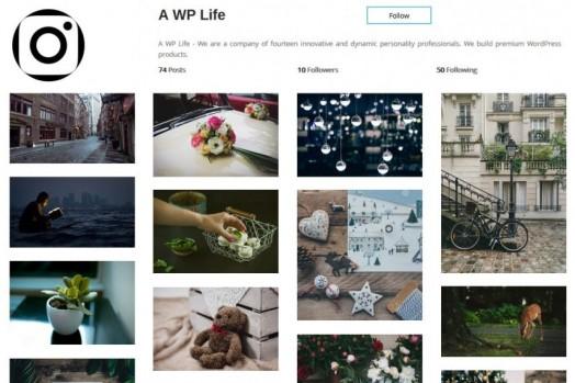 Instagram Type Gallery Premium WordPress Plugin