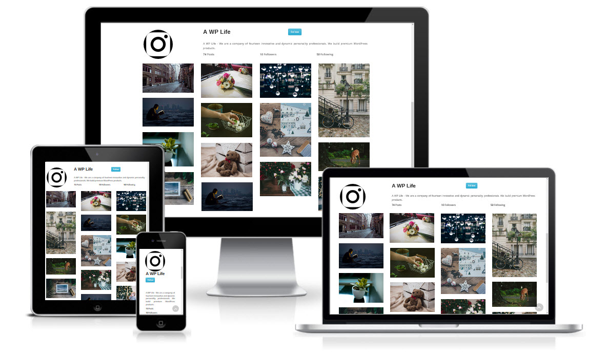 instagram type gallery wordpress plugin