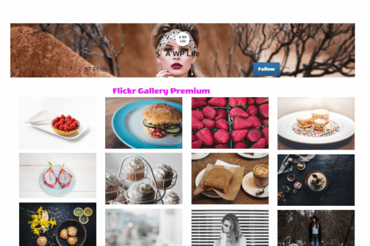 Flickr Gallery WordPress Free And Premium Plugin