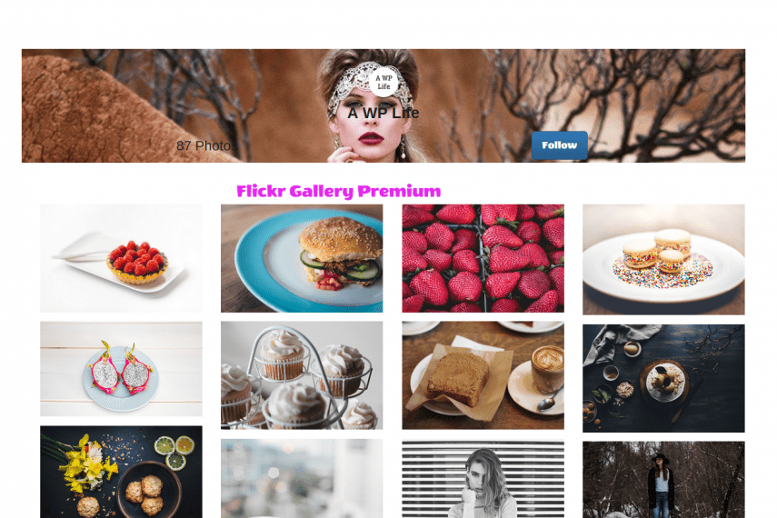 Flickr Gallery WordPress Free And Premium Plugin