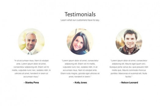 Testimonial WordPress Plugin