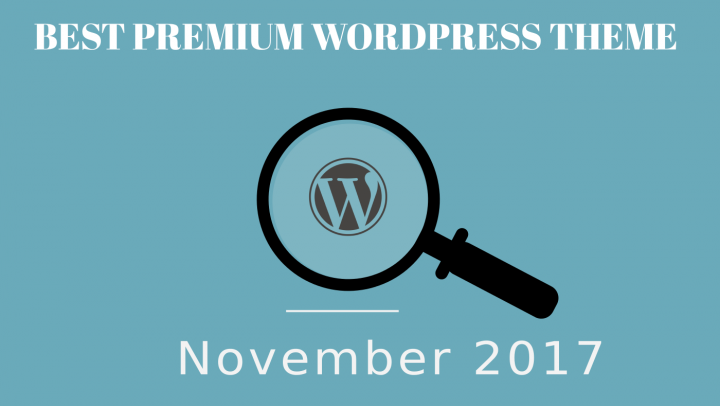 Best Premium WordPress Theme November 2017