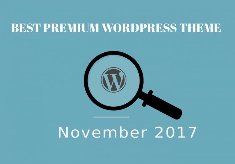 Best Premium WordPress Theme November 2017