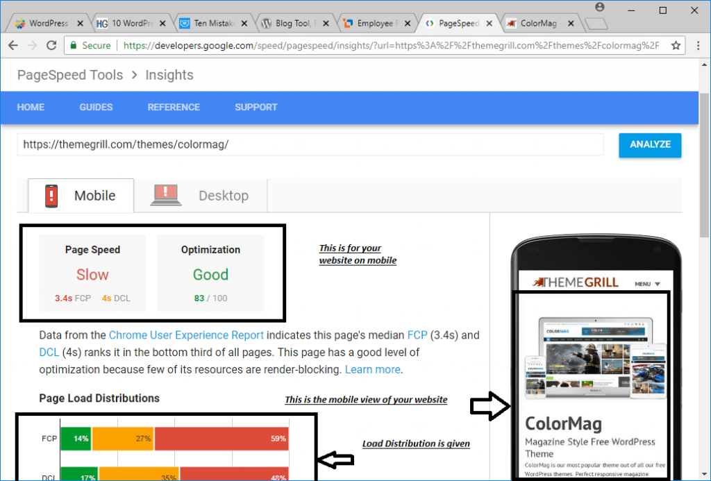 PageSpeed Insights Image 3 - A WP Life