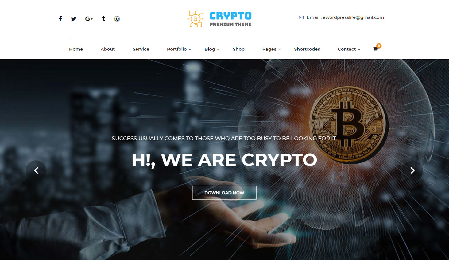 Crypto Premium WordPress Theme For Cryptocurrency Business and Blog Websites - A WP Life - Homepage Template
