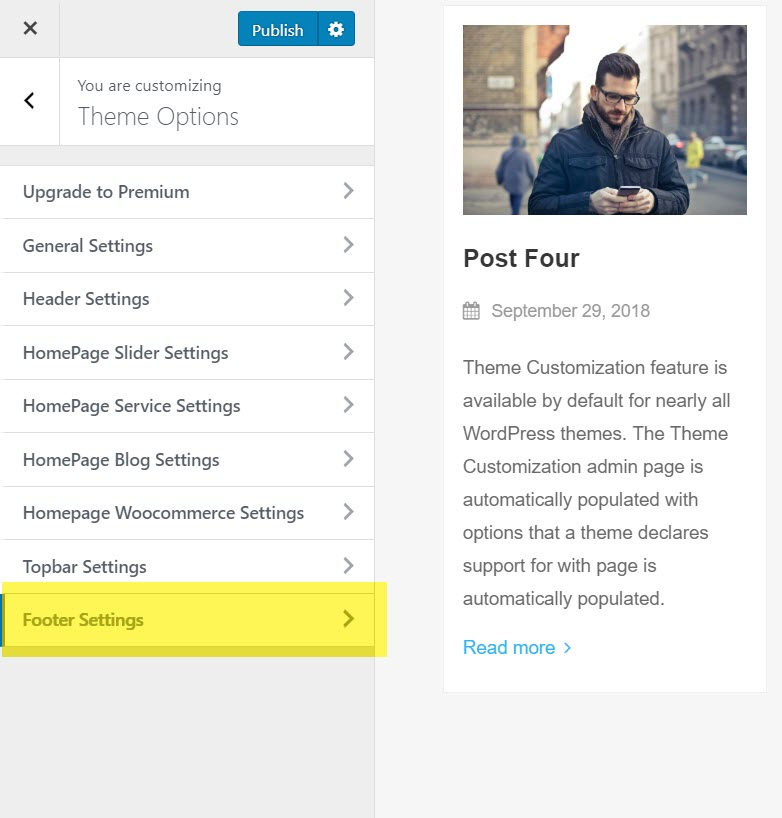 aneeq-wordpress-theme-homepage-footer-settings