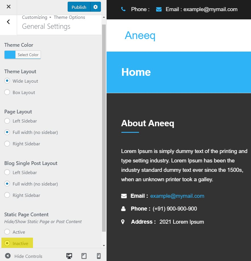 aneeq-wordpress-theme-homepage-general-settings-setup