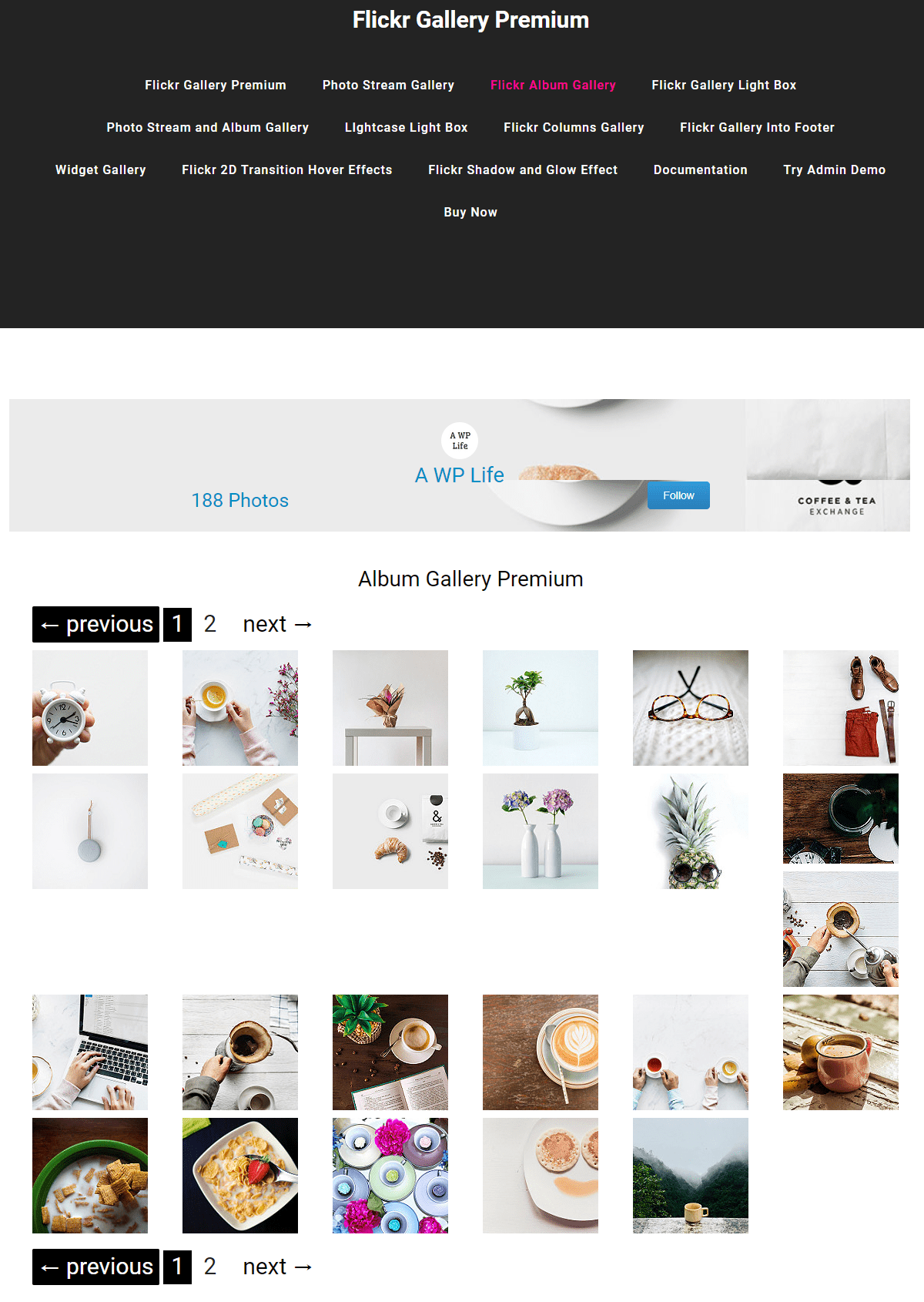 flicker gallery premium
