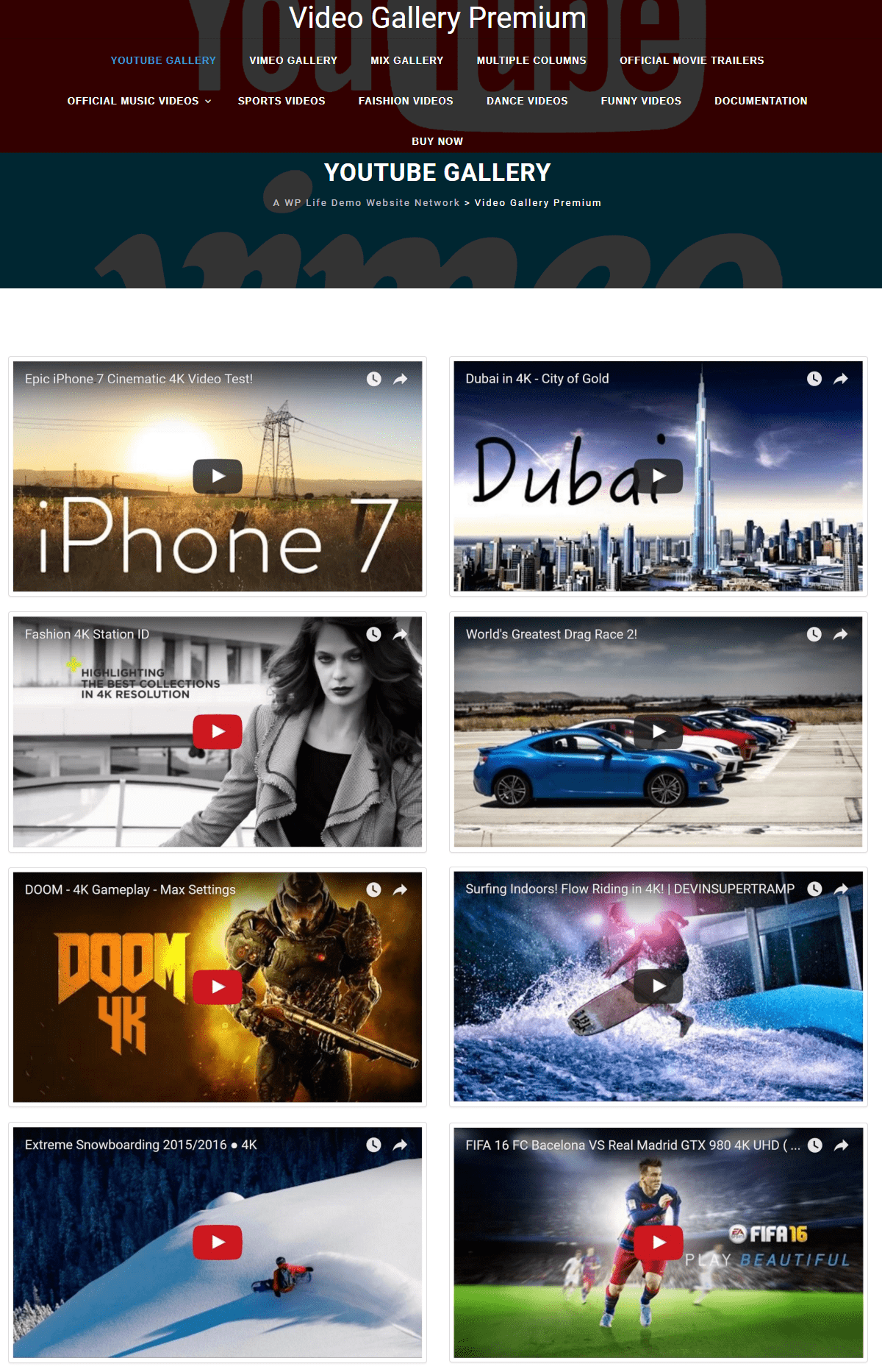 Video Gallery premium