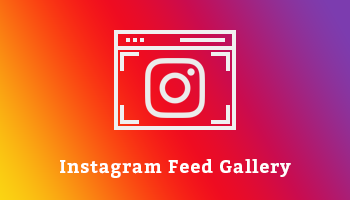 Instagram Feed Gallery Premium