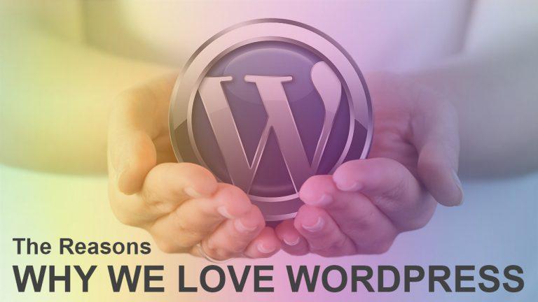 The Reasons Why We Love WordPress