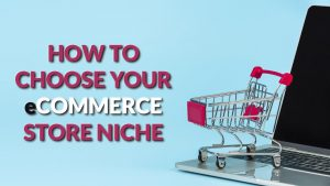 How to Choose Your eCommerce Store Niche