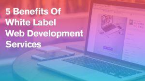 5 Benefits Of White Label Web Development Services